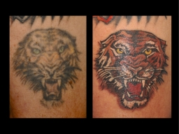 Cover-Up1