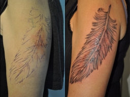 Cover-Up4